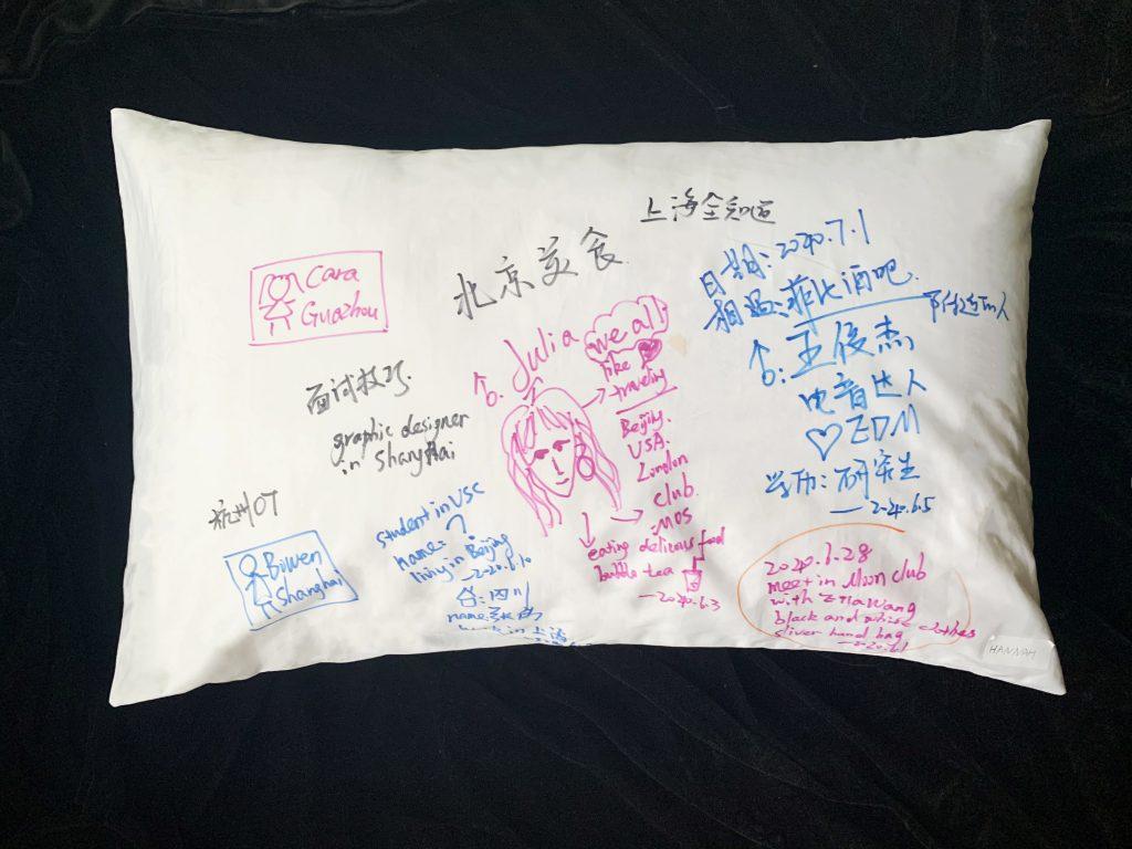 Hannah's Dream Social Pillow